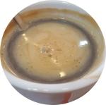 Vera_Coffee